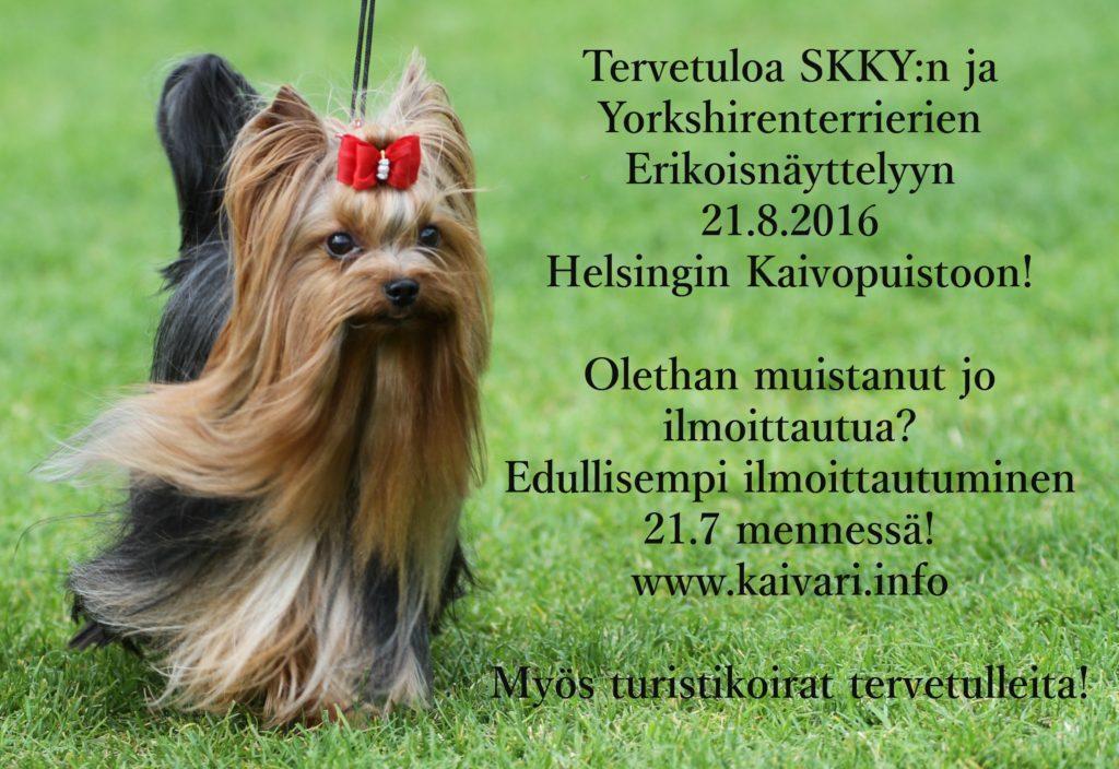 Kaivari info